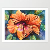 Tropical Hibiscus 9 Art Print