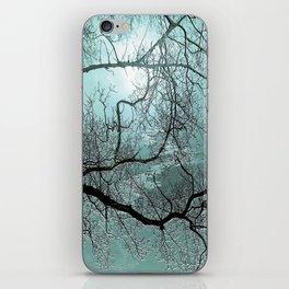 Blue Danube iPhone Skin
