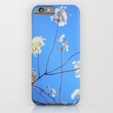 light beauty Slim Case iPhone 6s