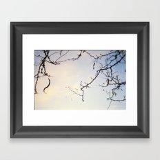 Reach up Framed Art Print