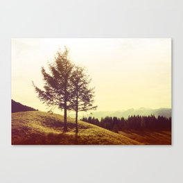 At the hillside Canvas Print
