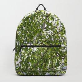 wood birch Backpack