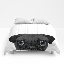 Black Pug, Original painting by miart Comforters