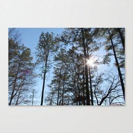 Trees 1 Canvas Print