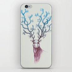 Reign iPhone & iPod Skin