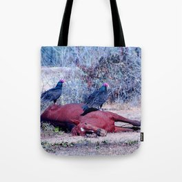 Sleeping Horse with birds Tote Bag
