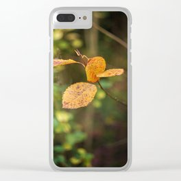 Fluctuation. Clear iPhone Case