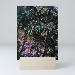 Abalone Shell 4 Mini Art Print