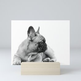 FrenchBulldog Puppy Mini Art Print