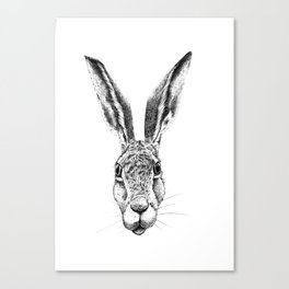 Black and White Big Stare Hare Canvas Print