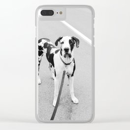 Harlequin Angel Puppy Clear iPhone Case