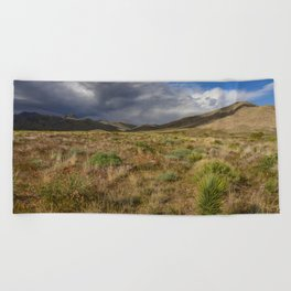 Painted_Desert 2073 - Southwest USA Beach Towel