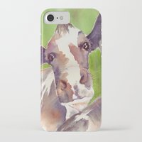 cow iPhone & iPod Cases featuring cow by Michele Petri