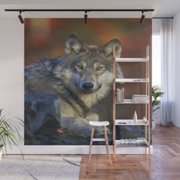A Wolfs Life Wall Mural