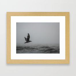 Ambitious Avian Framed Art Print