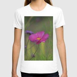 Purple jewel box T-shirt