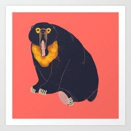 Sun Bear Study 1 Art Print