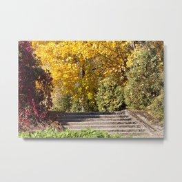 Ladder autumn Metal Print