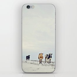 till the cows come home iPhone Skin