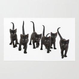 Group of kitten Rug