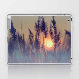 Winter sun in the reed Laptop & iPad Skin