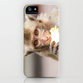Monkeys of Thailand iPhone Case