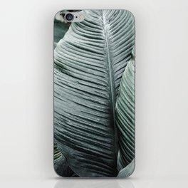 Banana Leaves Tropical Art iPhone Skin