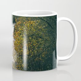 Youngs River Falls II Coffee Mug