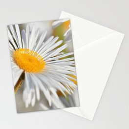 Marquerite white yelow 02 Stationery Cards