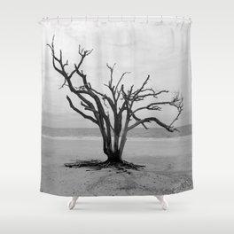 Botany Bay 2 Shower Curtain