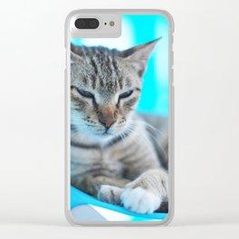 200. Sleeping Greek Cat, Greece Clear iPhone Case