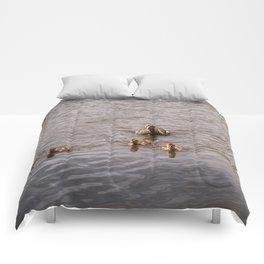 Mother Duck with Ducklings Comforters