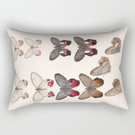 Moths And Butterfly Vintage Scientific Hand Drawn Insect Anatomy Biological Illustration Rectangular Pillow