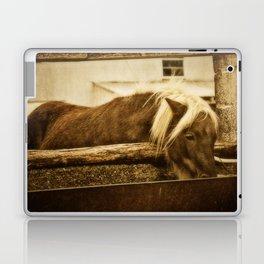 Mini Horse At The  Water Trough  Laptop & iPad Skin