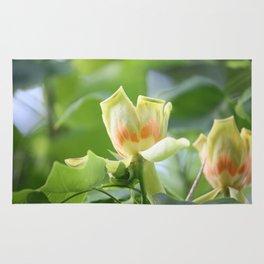 Tulip Tree - Liriodendron Rug