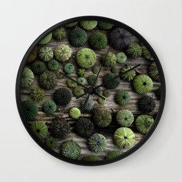 Urchins Wall Clock