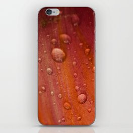 Dewdrops iPhone Skin