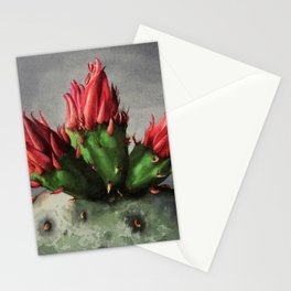 Blooming Opuntia Cactus Flower Stationery Cards