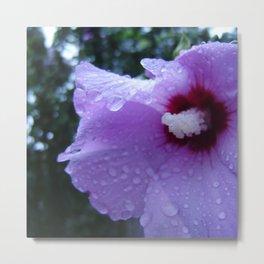 Hibiscus Rain Metal Print