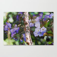 Dragonfly :: Indigo Canvas Print