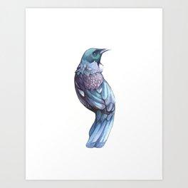 Tui Bird Art Print