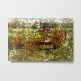 Grunge Dynamics 092 Tiger Moth Metal Print