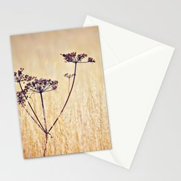 Somewhere Better Stationery Cards