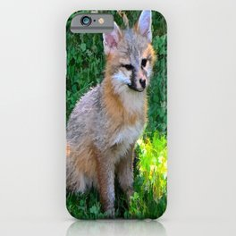 Little Grey Fox iPhone Case
