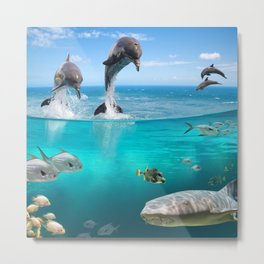 Marine Wildlife Metal Print