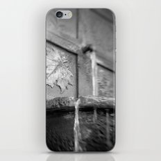Distant Fall iPhone & iPod Skin