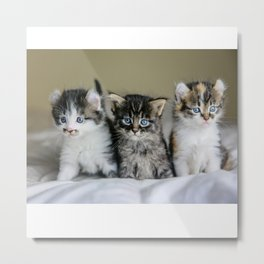 Cats Make Me Happy So Much Metal Print