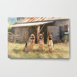 German Shepherds Metal Print