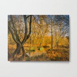 Kintbury Marshes Metal Print
