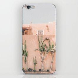 Vintage Los Angeles iPhone Skin